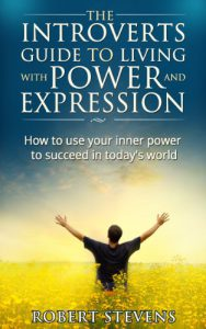 Cover for he Introverts Guide to living with power and expression.